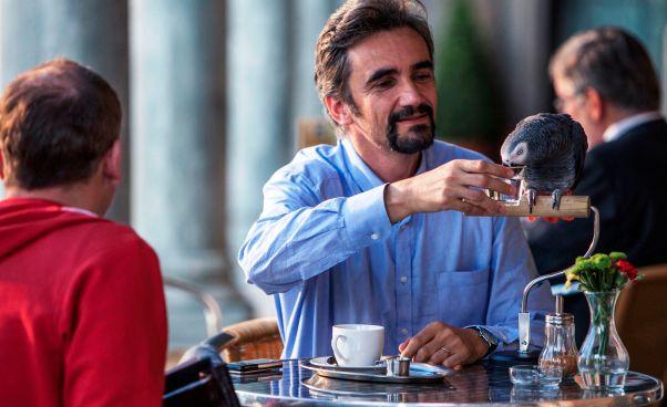 Recenzja filmu Zagubieni 2015 czeska komedia o papudze Petra Zelenki farsa dramat czeski film Opinie