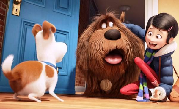 Recenzja filmu dla dzieci Sekretne życie zwierzaków domowych komedia animowana film akcji Opinie