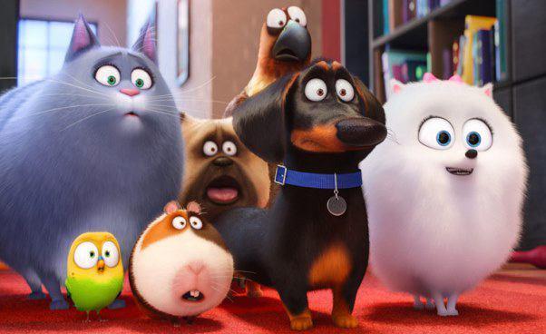 """""""Sekretne życie zwierzaków domowych"""" bardzo dobry film animowany, komedia dla dzieci idorosłych. Recenzja, opis, opinie"""