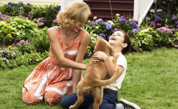 """""""Był sobie pies"""" komediodramat, film familijny dla dzieci o psie, który po śmierci odradza się w innych psach. Recenzja"""